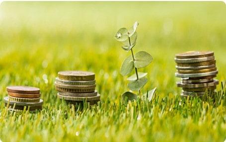 Twój Doradca Rolny - Dotacje Zdjęcie