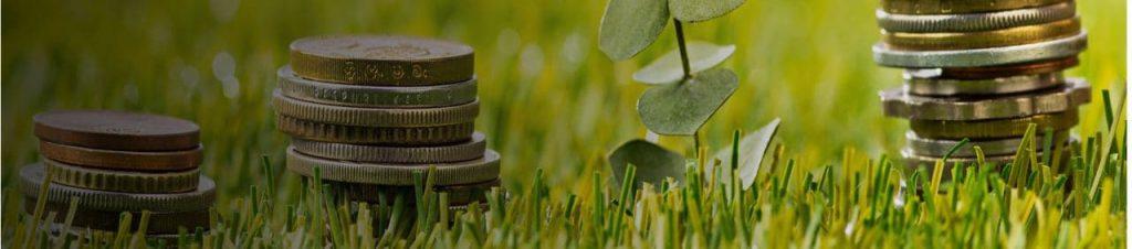 dopłaty dla rolników - Rozwój Usług Rolniczych