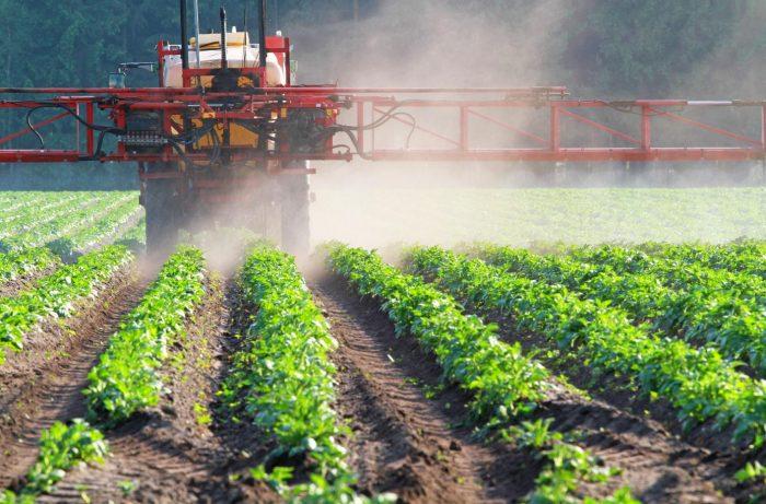 rolnictwo i dotacje unijne