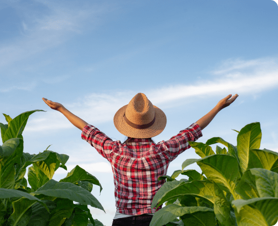 praca doradca rolny